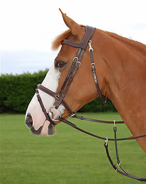 Dy'on Working Collection Fancy Bridle