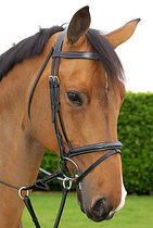Dyon working collection fancy bridle